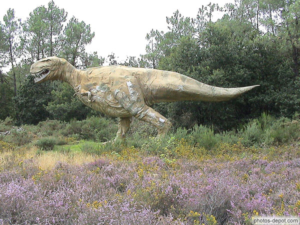 Tyranosaure photo